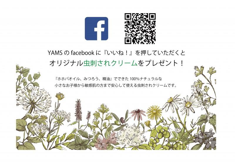 YAMSのfacebookに『いいね!』をお願いします(^^)